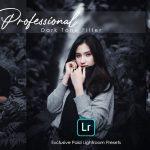 Professional Photography Lightroom Preset Download
