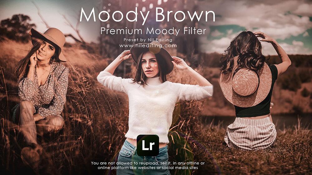 Moody Brown Free Lightroom