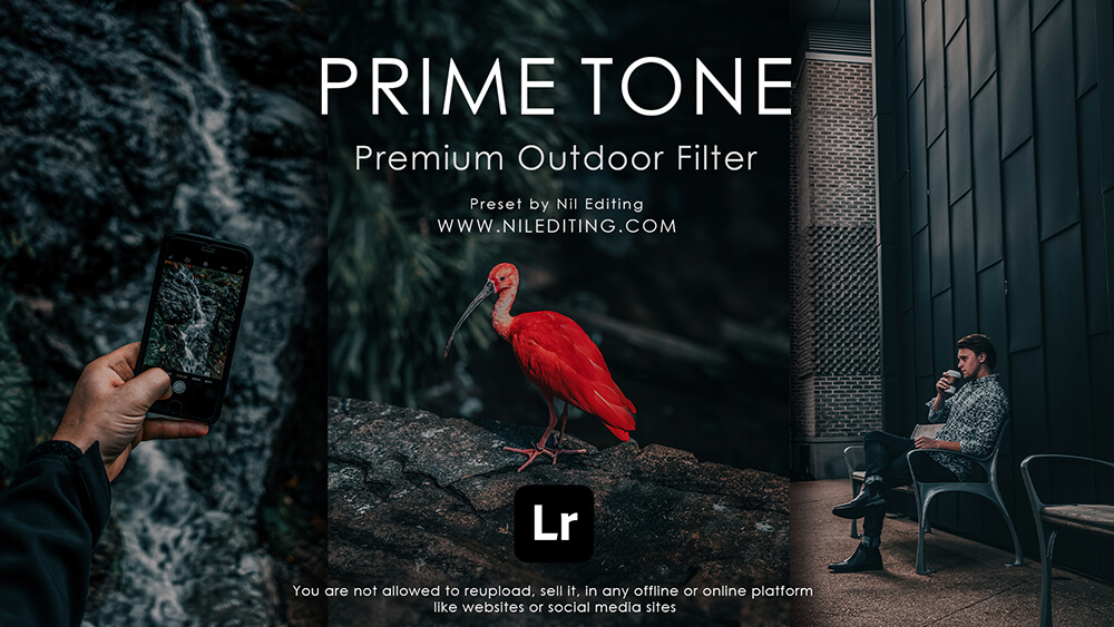 Outdoor Photography Preset by nil editing