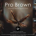 Pro Brown Lightroom Preset Free Download