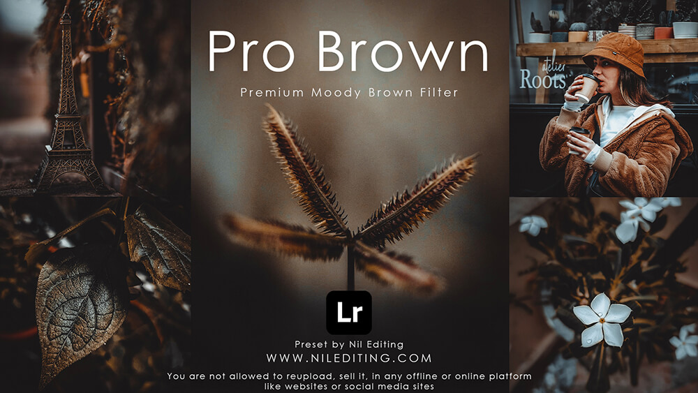 Pro Brown Preset by Nil Editing