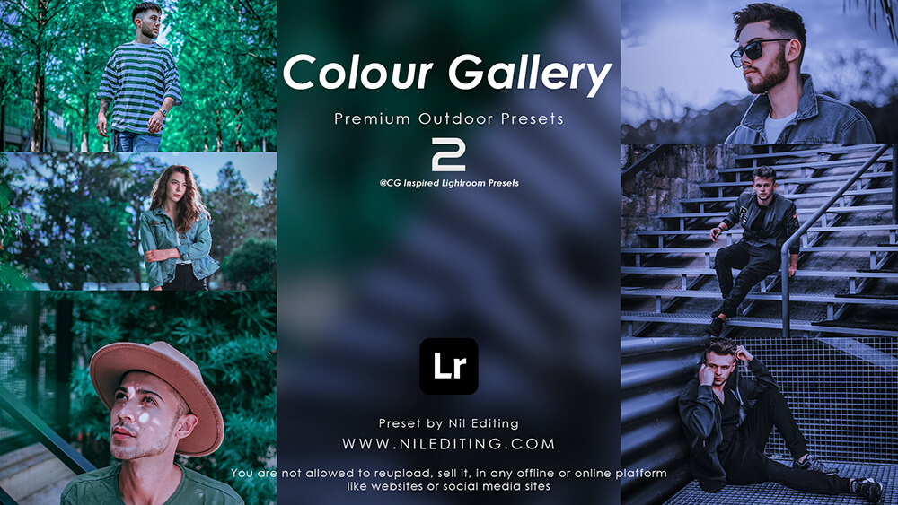 Colour Gallery Presets