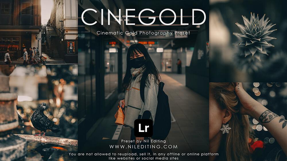 Cinegold preset by Nil Editing