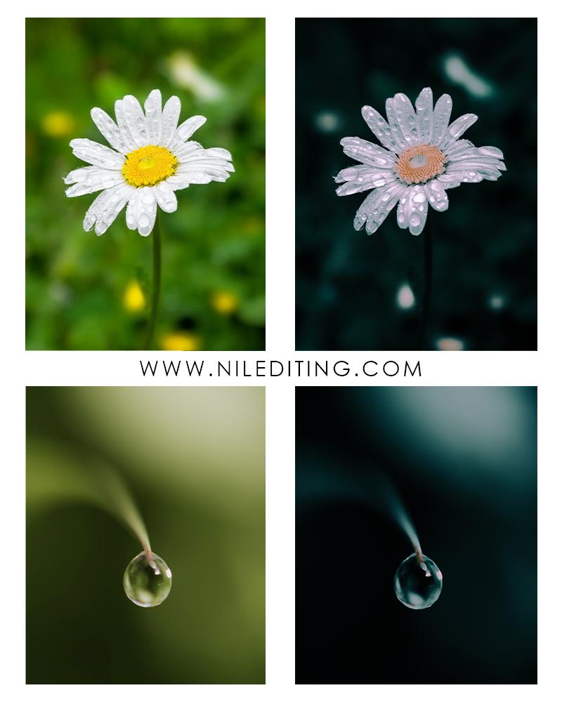 Water Droplets Lightroom Preset
